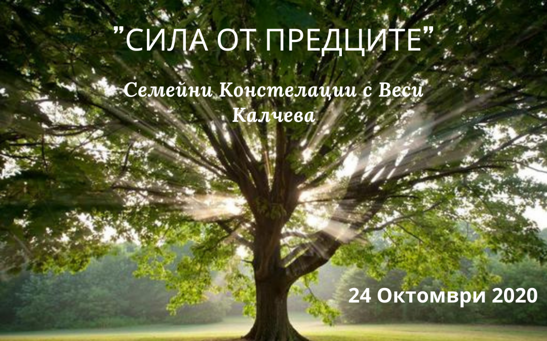 Сила от Предците – Практически семинар по Семейни констелации